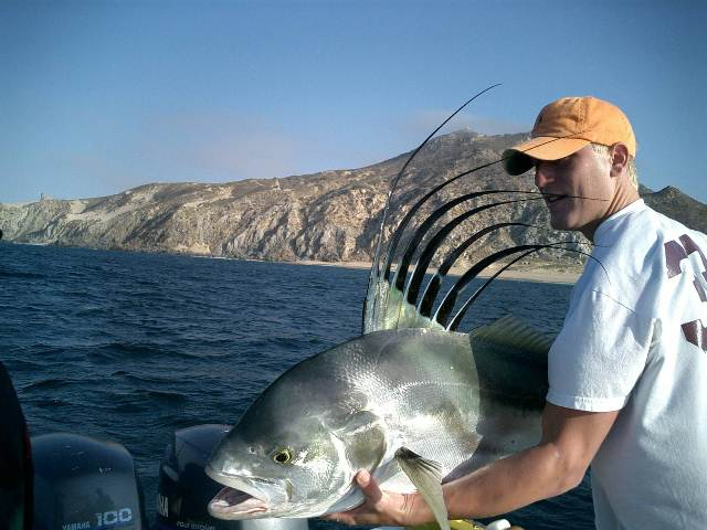 Beto 39 s sportfishing cabo san lucas los cabos mexico for Los cabos fishing charters