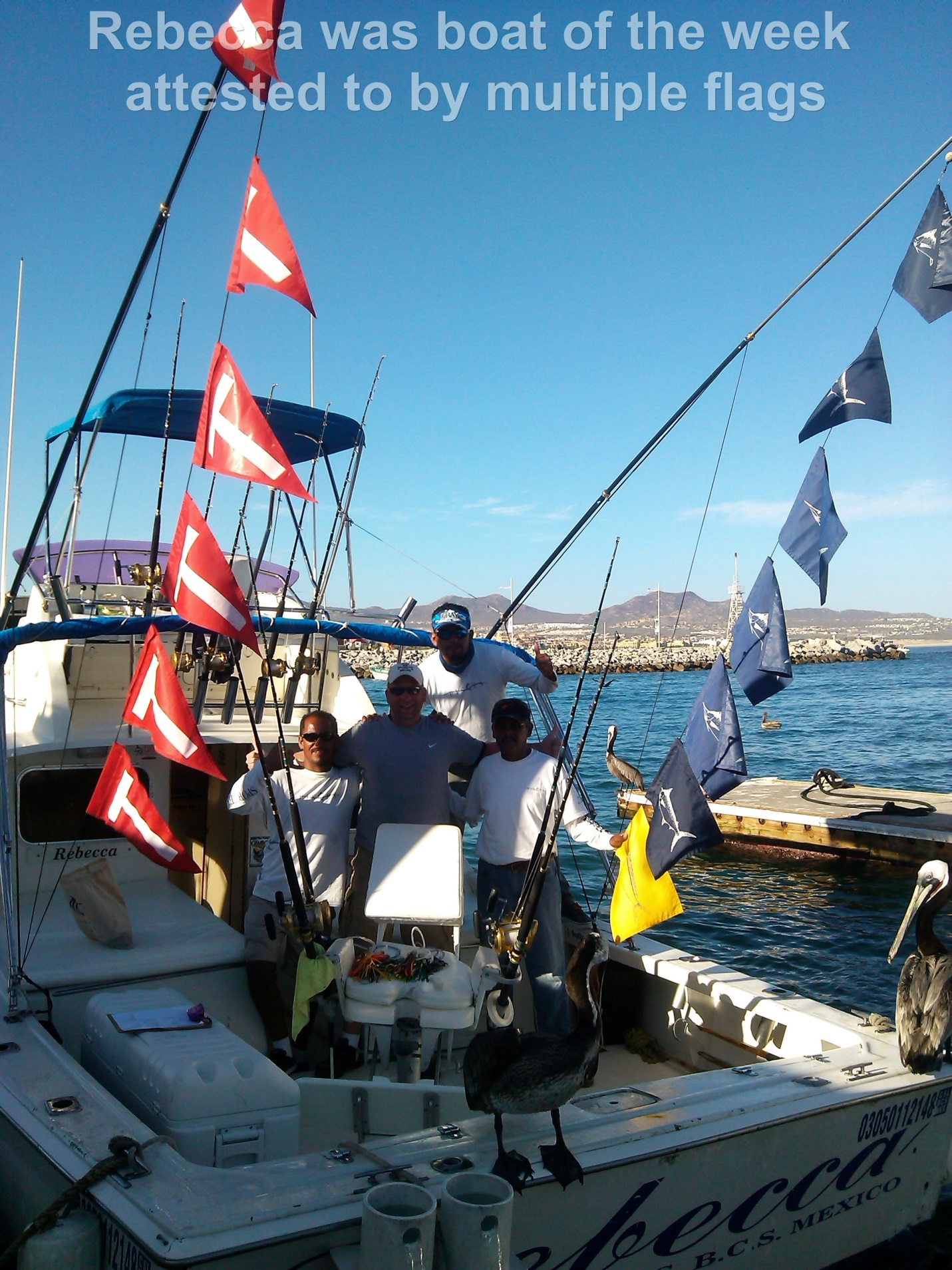 Pisces sportfishing weekly fish report april 12th to 18th for Pisces fishing cabo
