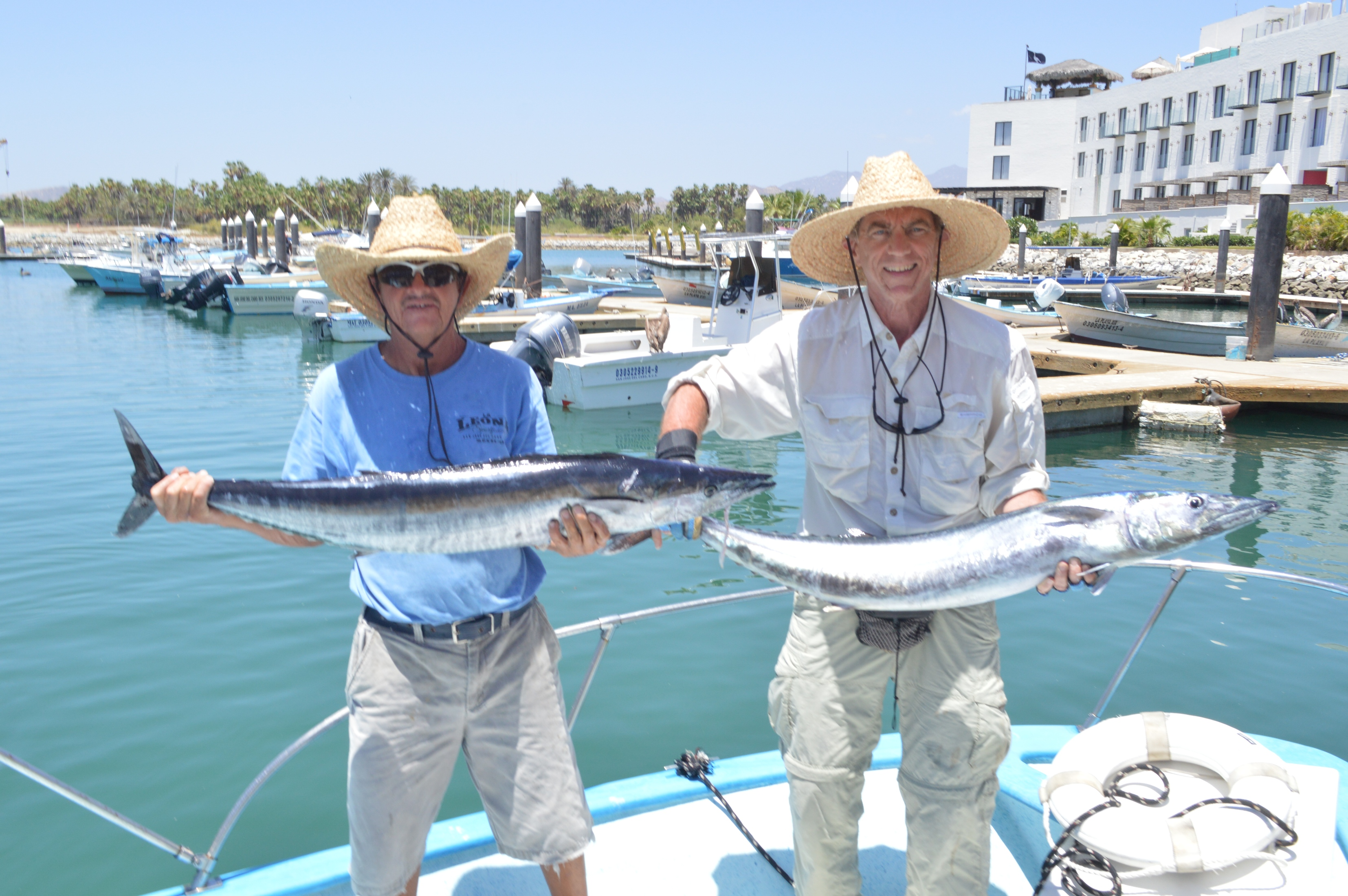 Gordo banks pangas fish report april 26th 2014 cabo for San jose del cabo fishing report