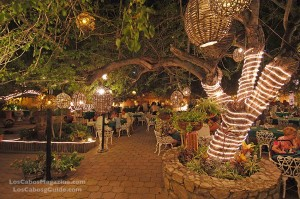 La Golondrina Restaurant Cabo