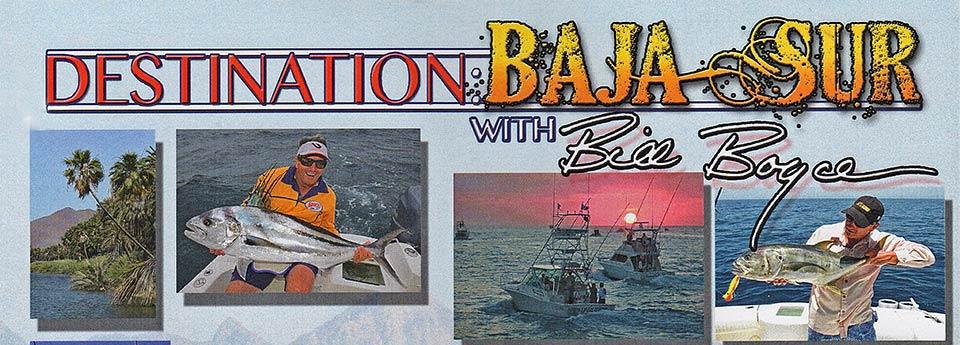 destination-baja-sur-bill-boyce-2