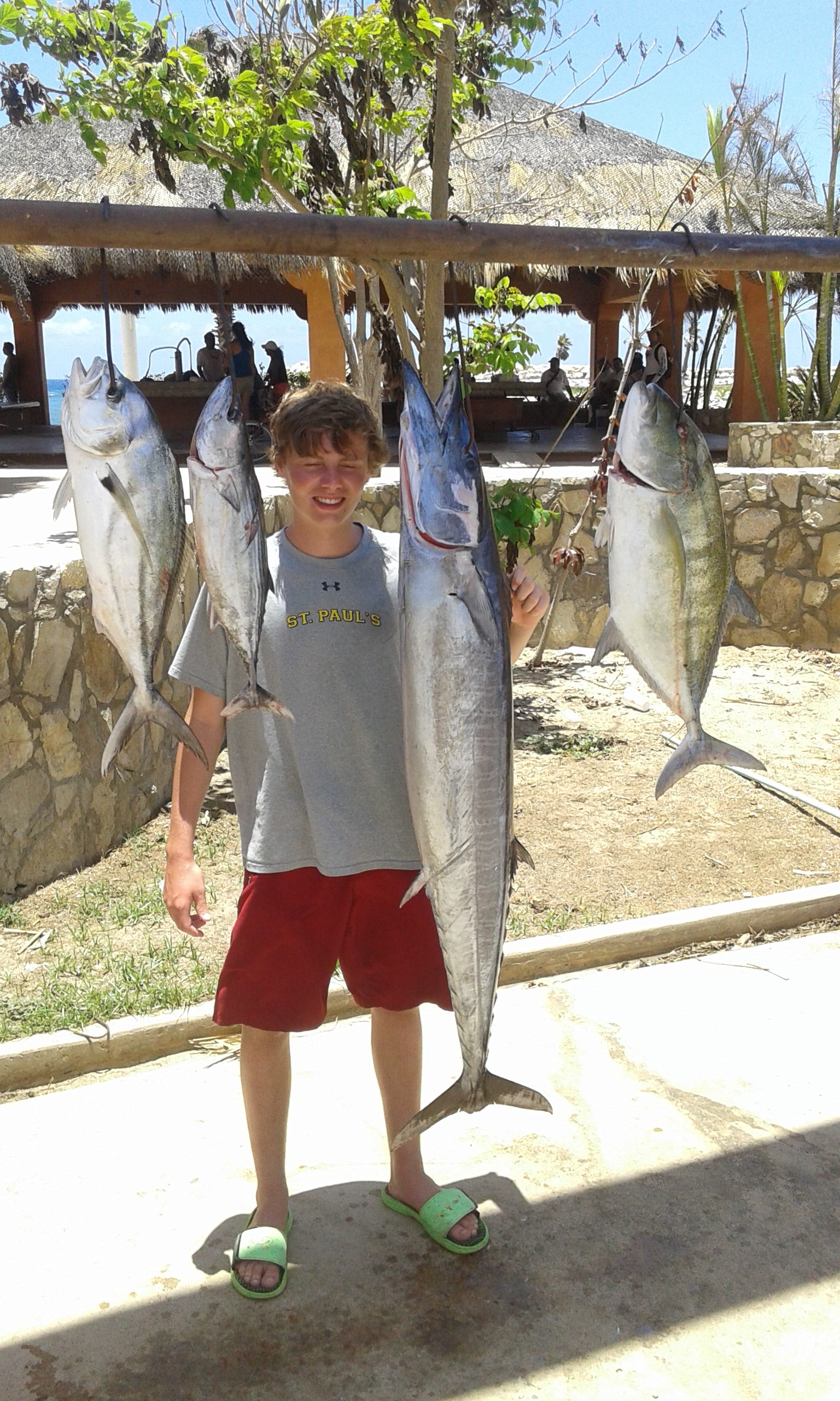 Gordo banks pangas fish report to july 03 2015 cabo for San jose del cabo fishing report