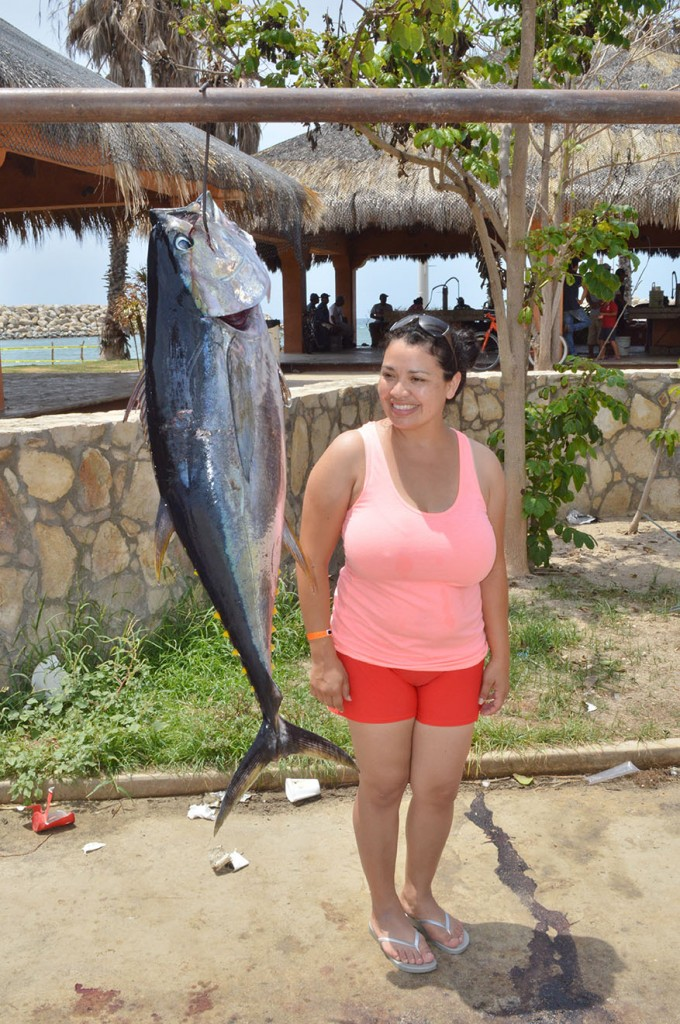 Gordo banks pangas fish report to august 8 2015 cabo for Cabo san lucas fishing season