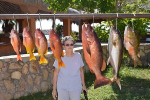 Gordo Banks Pangas Fish Report October 28 2016