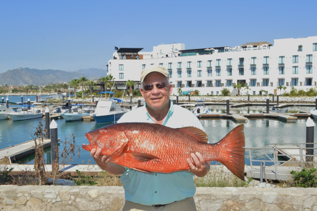 Gordo banks pangas fish report october 28 2016 los cabos for San jose del cabo fishing report