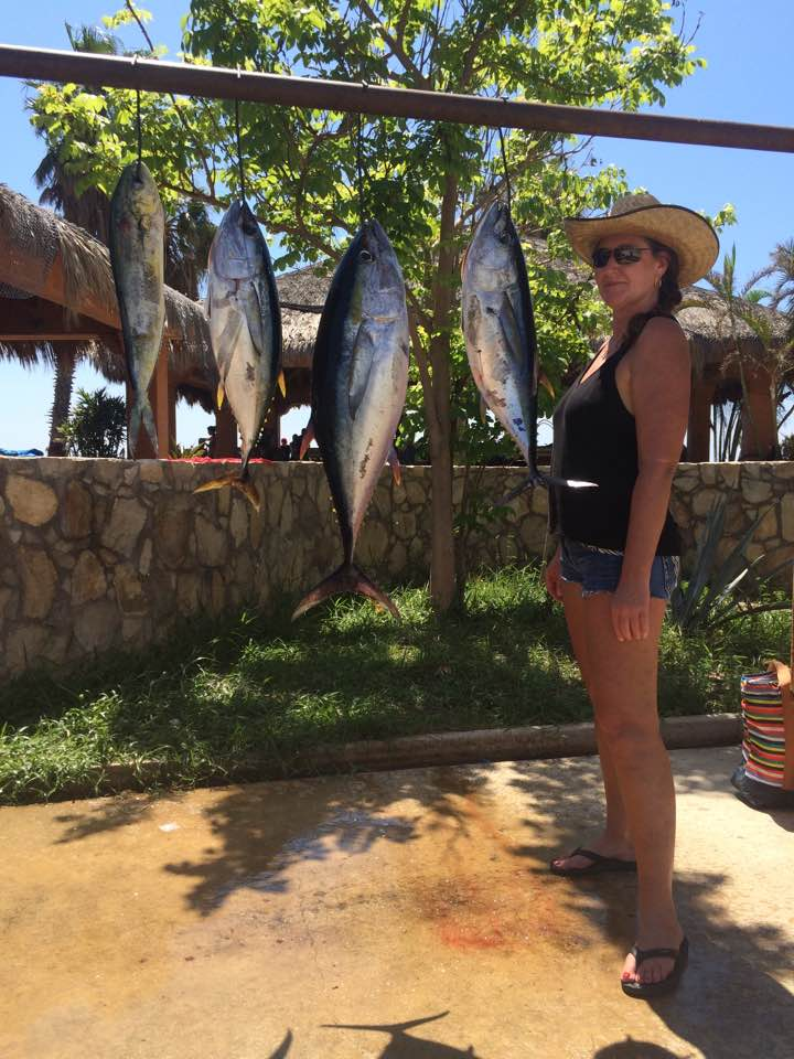 Gordo banks pangas fish report october 8 2016 for San jose del cabo fishing report