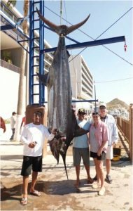 Pisces Fish Report October 22nd to 28th, 2016 - Photographs by Oscar Bañaga