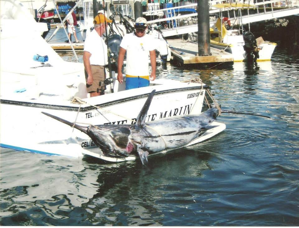 D 39 luxe charters for Cabo san lucas fishing charters