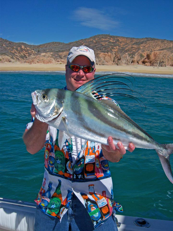 Fishing photos cabo san lucas photo gallery los cabos for Rooster fish cabo