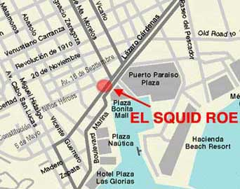 squid roe cabo san lucas map