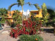 Posada La Poza Todos Santos Los Cabos Baja Mexico