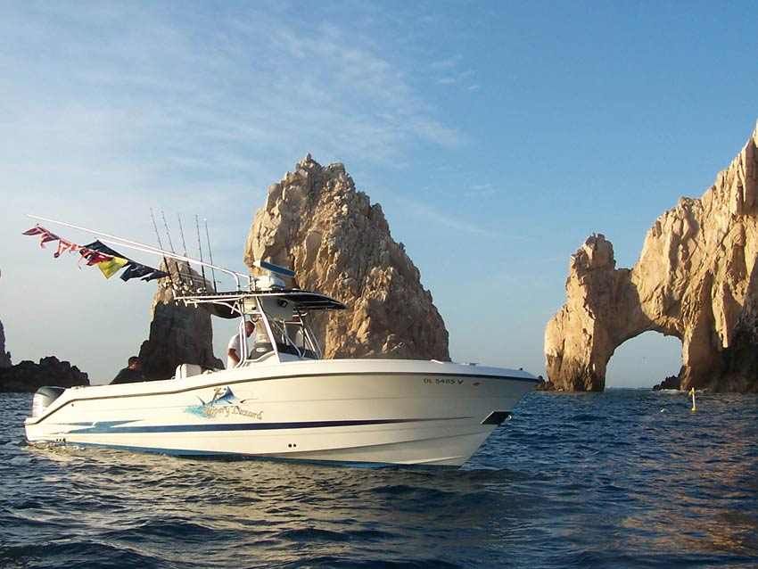 Slippery lizzard sportfishing cabo san lucas los cabos for Los cabos fishing