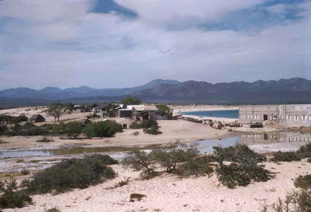 Cannery Cabo San Lucas, April 19, 1957 - Photo by Howard E. Gulick.