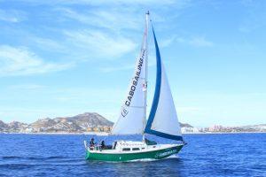 cabo sailing cruises