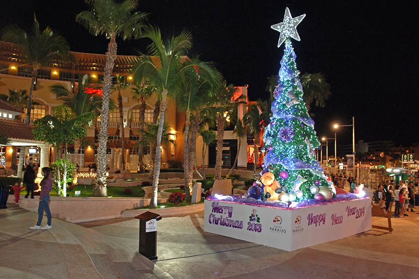 Christmas Tree At Puerto Paraiso Mall Downtown Cabo San Lucas