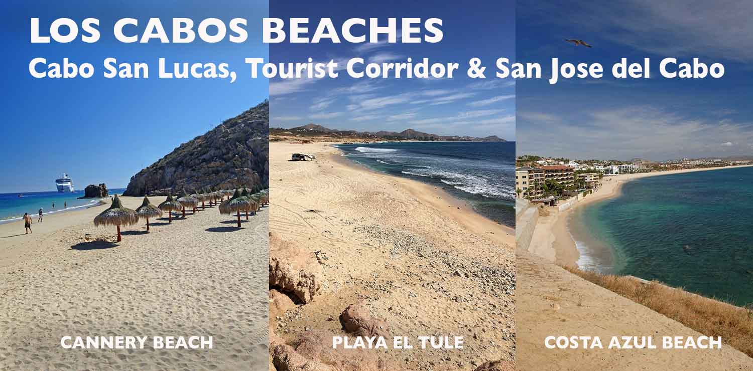 Beaches Of Los Cabos Baja