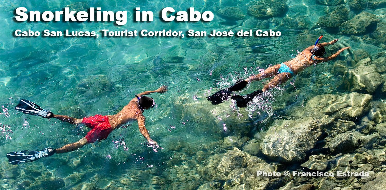 Snorkeling in Cabo San Lucas Los Cabos