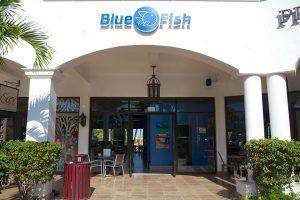 Blue Fish Cabo, San Jose del Cabo, Los Cabos, Baja California Sur, México