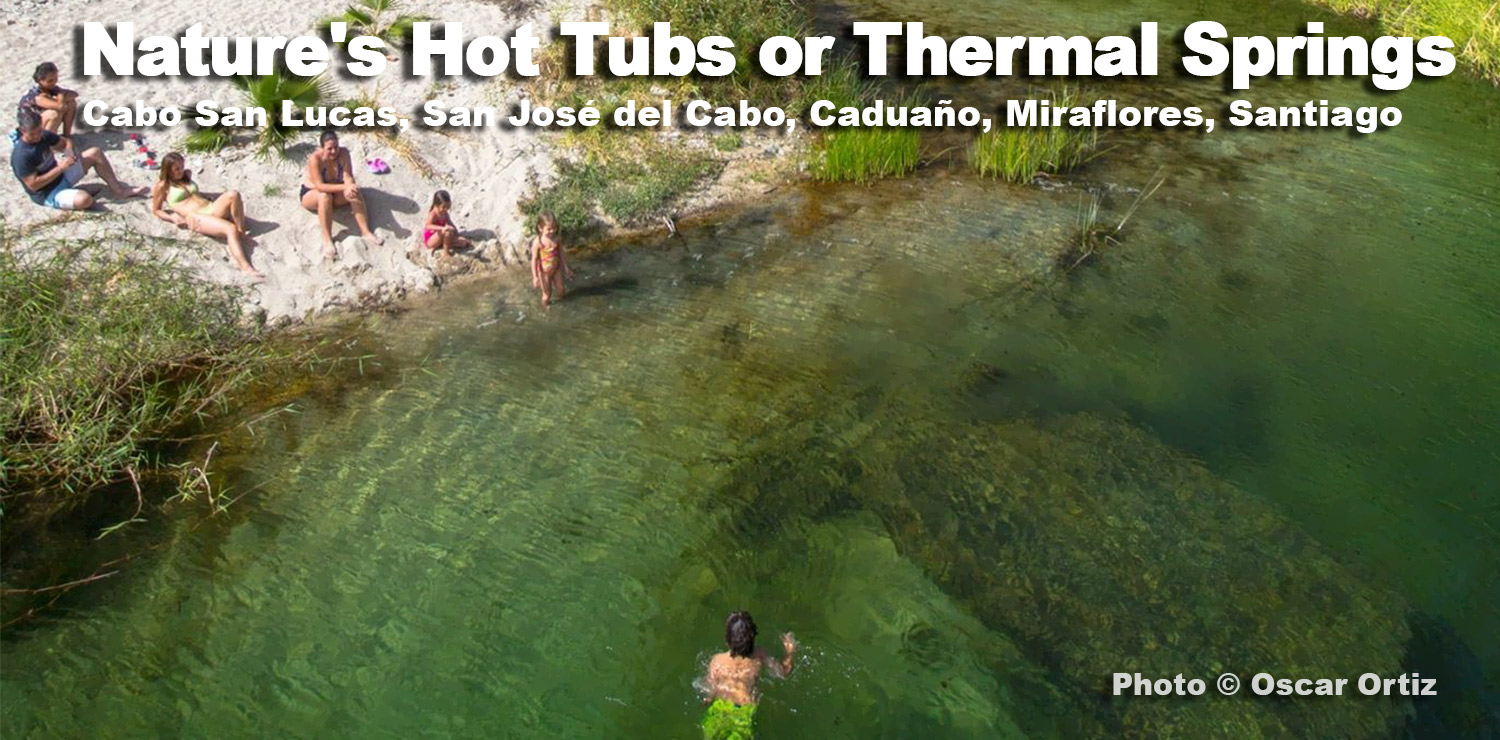 Nature S Hot Tubs Or Thermal Springs In Los Cabos