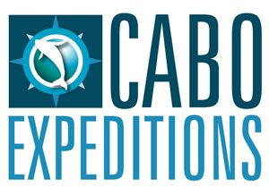 Cabo Expeditions - ATV Tours