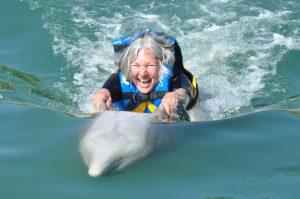 Dolphin Discovery San José del Cabo, Los Cabos, Baja California Sur, México