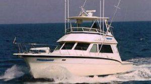 Cabo San Lucas Fishing Deals