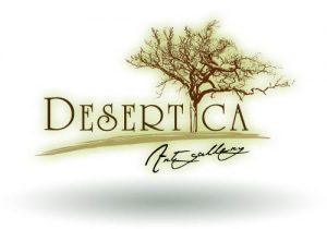 desertica-art-gallery-san jose del cabo