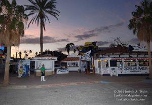 Cabo San Lucas Restaurants Giggling Marlin Cabo