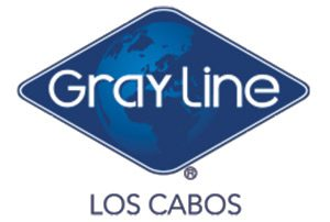 Car care: Gray Line