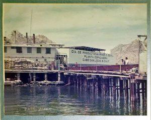 tuna-cannery-cabo-ames-latitude-1