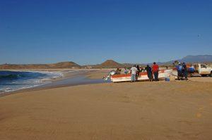 playa-punta-lobos-baja-8822_r2
