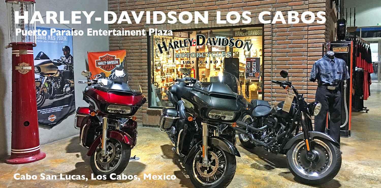 Harley Davidson Cabo Los Cabos Guide