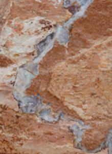 Opal branch in rough