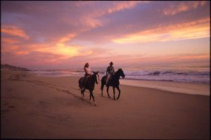 horseback-pacific-cabo-sunset-1990-034-2047-2