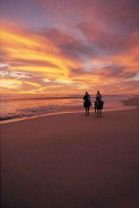 horseback-ride-couple-beach-cabo-071_1544-2