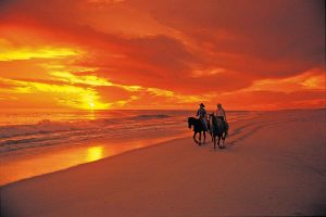 horseback-ride-sunset-cabo-beach-033_020047-2
