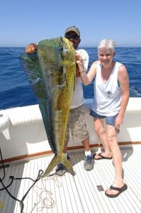 large-dorado-cabo-female-angler-4507_r2