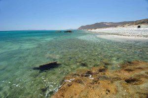 punta-pescadero-area-beach-2017-0763-2