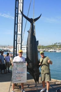 Blue Marlin - 650 lbs 13 October 2008 RedRum Sportfishing Angler: Haverkate
