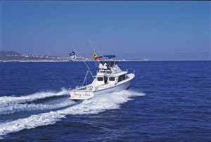 tracy-ann-pisces-fishing-cruiser-cabo-271-020047