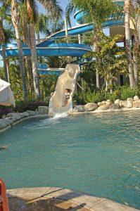 wet-fun-aquatic-park-los-cabos-1110-2