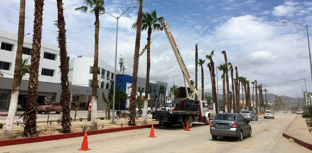 cleanup-downtown-cabo-03-sept-18-1857-x2