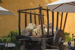Old cart with agave hearts at the José Cuervo distillery May 2005 - DSC_0997