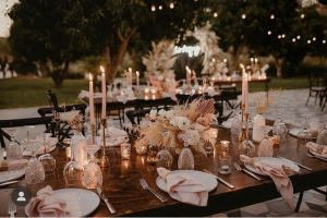 Cabo Weeding Services