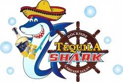 tequila-shark-marina-cabo