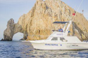 Gaviotas Sportfishing Fleet -r14