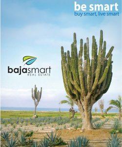 Baja Smart Real Estate Los Cabos, logo photo