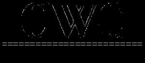 cabo-wedding-planner-logo-1