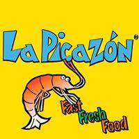 La-Picazon-Los-Cabos