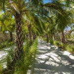 palmilla-dunes-2019-247A6763